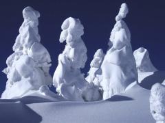 Дзюхё: снежные монстры Японии