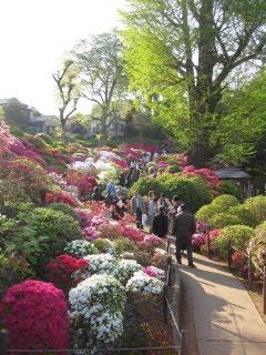 сад императорского дворца