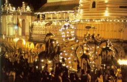 Фестиваль Зуба Будды на Шри-Ланке